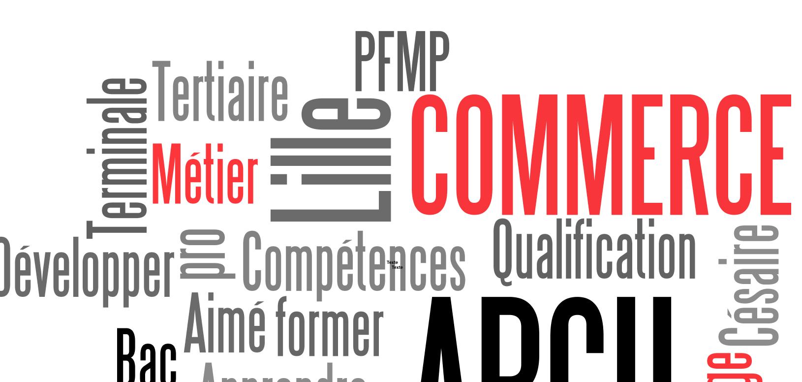 Bac Pro Commerce en PFMP à l'étranger